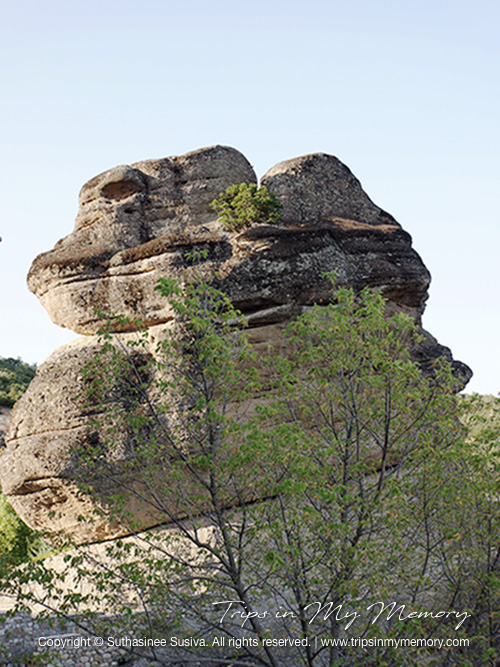 The Gigantic rock